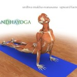 Portugal: Intensive Workshop on Anatomy and Biomechanics in Yoga