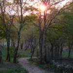 Portugal: Zen Meditation – Retreat With Amy Hollowell Sensei