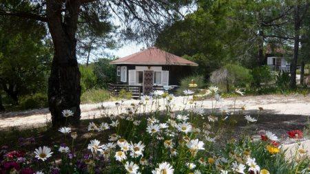 Quinta da Calma
