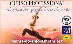 Curso profissional: Tradições do Yoga e da Meditação
