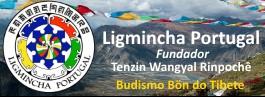 Webcast Gratuito ao Vivo por Tenzin Wangyal Rinpochê