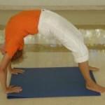 Portugal: Curso de Yogaterapeuta e Professor de Yoga