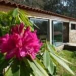 Portugal: Retiro de Hatha Yoga com Miguel Homem na Quinta das Águias