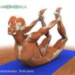 Portugal: III Workshop Intensivo de Anatomia e Biomecânica no Yoga