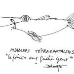 """A Visão Perfeita"" por Georges Stobbaerts"