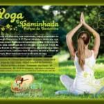 Brasil: Caminhada, Prática de Yoga e Piquenique no Parque da Cantareira, São Paulo