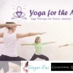 """Portugal: """"Yoga Therapy – Mindfulness – Neuroscience"""" Como Tratamento Complementar Em Doenças Mentais Com Heather Mason"""