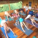 Portugal: Curso de Professor de Yoga Creditado pela Yoga Alliance International