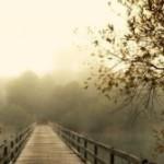 Portugal: Retiro Zen O Caminho Aberto com Francis Chauvet