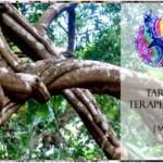 Portugal: Curso Tarot Terapêutico com José M. Silva na Essência d'Oriente em Valongo