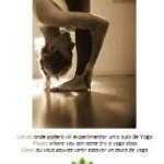 Portugal: Retiro de Meditação Zen em Sintra com Cristina Coelho