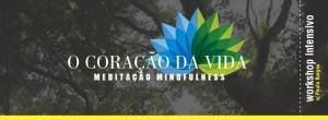 Portugal: Workshop Intensivo de Meditação Mindfulness com Paulo Borges – VN de Gaia