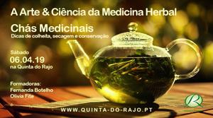 Portugal: A Arte & Ciência da Medicina Herbal – Chás Medicinais, dicas de colheita, conservação e secagem – Sintra