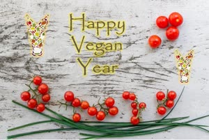Portugal: Happy Vegan Year n'O Burrito