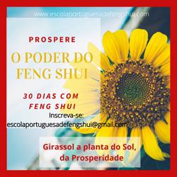 Portugal: Prosperar – 30 Dias Com Feng Shui