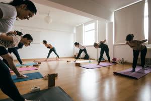 Portugal: Curso de Instrutores de Yoga – YogaPro